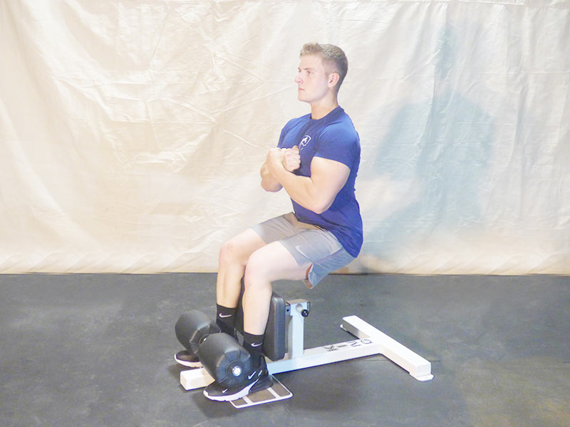 sissy squat